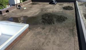 roof debris gutter cleaning