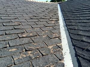 A closer look at disintegrating shingles