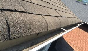 granules in gutters